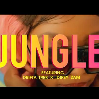 Video:Liaparis ft Drifta Trek & Dipsy Zam - Jungle